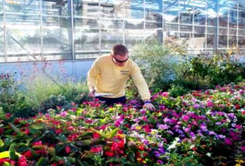 JCC's Horticulture Technology Degree Program